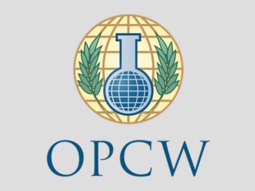 Siria: «Siamo stati manipolati». L'incidente di Douma e l'indagine OPCW.